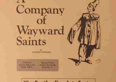 A Company Of Wayward Saints