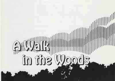 A Walk In The Wood